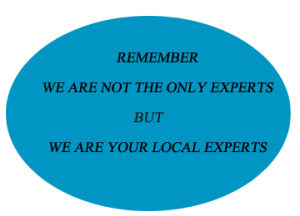local experts logo